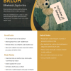 Brloh - 12. ročník